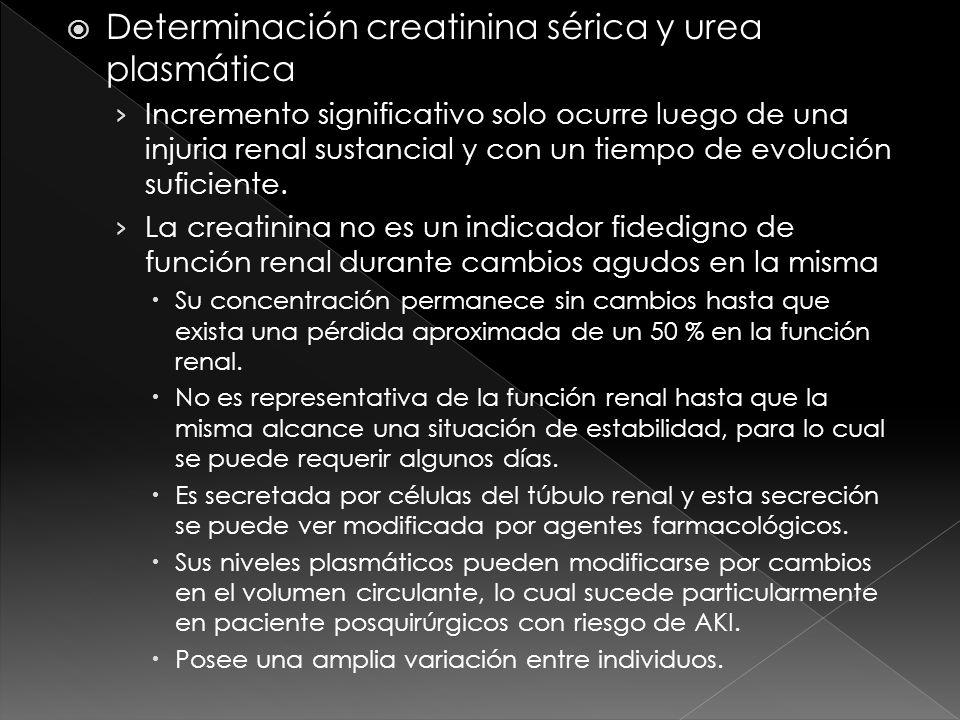 Determinación creatinina sérica y urea plasmática Incremento significativo solo ocurre luego de una injuria renal sustancial y con un tiempo de evoluc