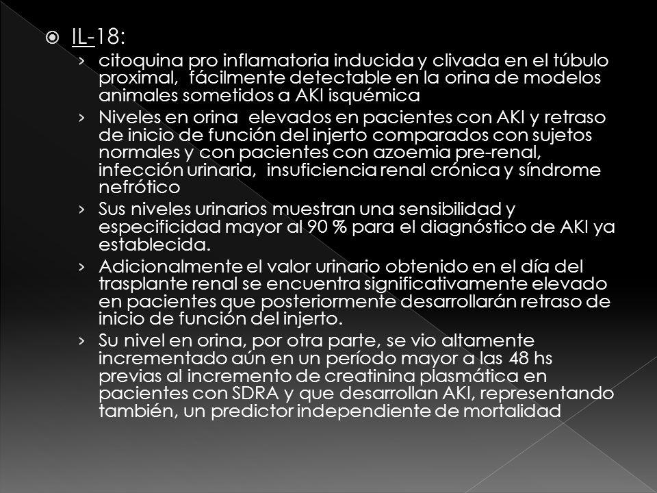 IL-18: citoquina pro inflamatoria inducida y clivada en el túbulo proximal, fácilmente detectable en la orina de modelos animales sometidos a AKI isquémica Niveles en orina elevados en pacientes con AKI y retraso de inicio de función del injerto comparados con sujetos normales y con pacientes con azoemia pre-renal, infección urinaria, insuficiencia renal crónica y síndrome nefrótico Sus niveles urinarios muestran una sensibilidad y especificidad mayor al 90 % para el diagnóstico de AKI ya establecida.