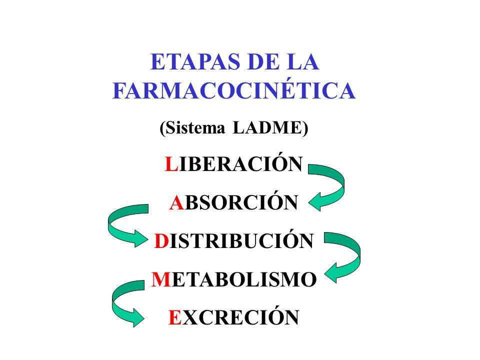 ETAPAS DE LA FARMACOCINÉTICA (Sistema LADME) LIBERACIÓN ABSORCIÓN DISTRIBUCIÓN METABOLISMO EXCRECIÓN