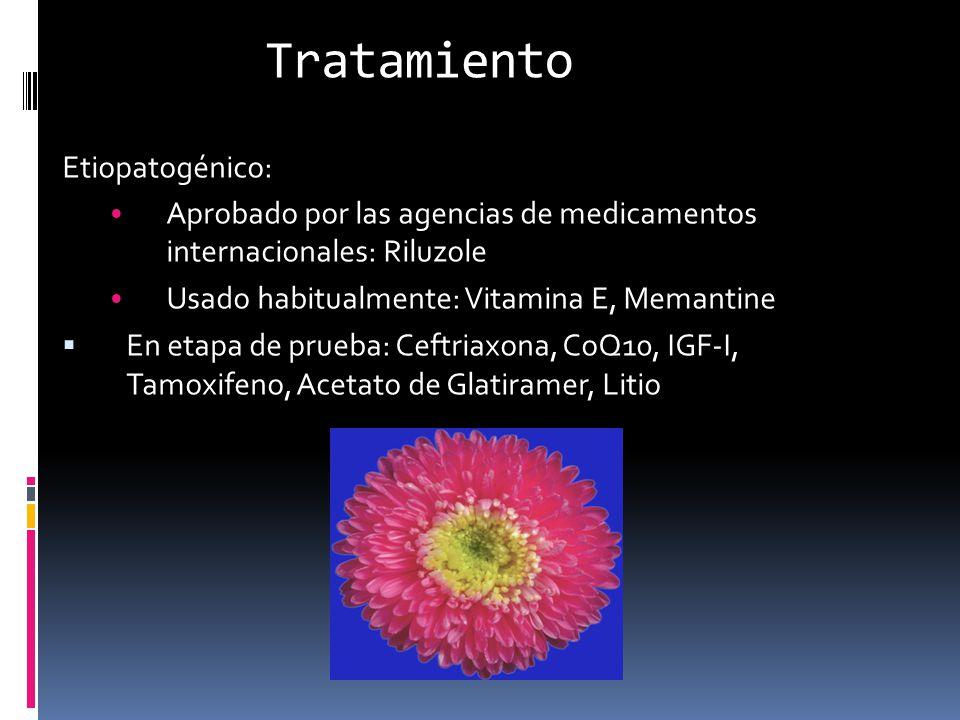 Tratamiento Etiopatogénico: Aprobado por las agencias de medicamentos internacionales: Riluzole Usado habitualmente: Vitamina E, Memantine En etapa de
