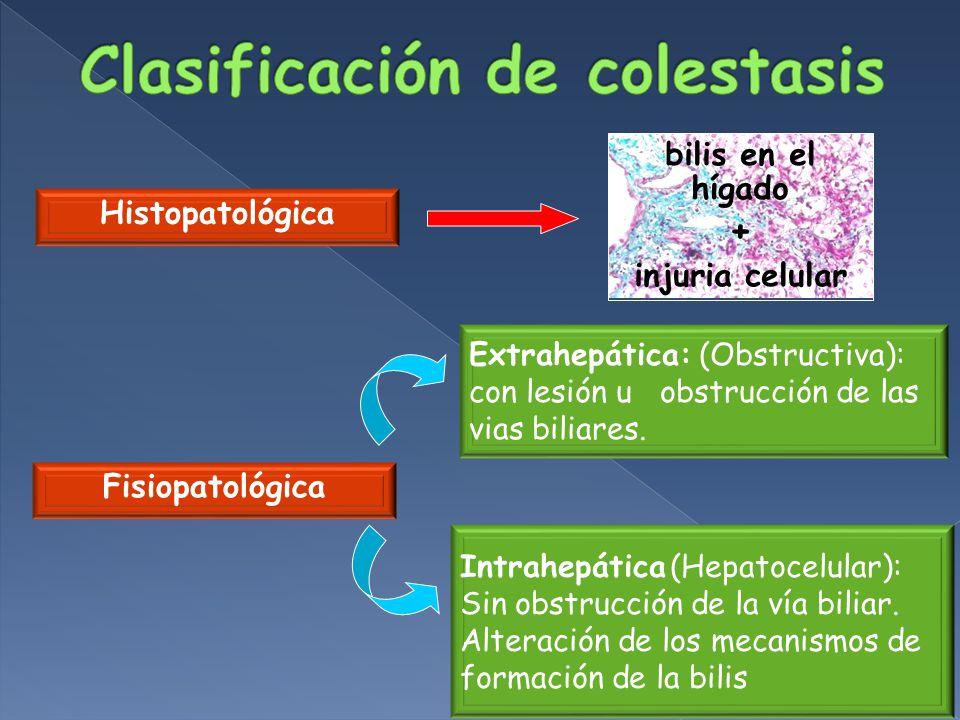 Histopatológica Fisiopatológica Extrahepática: (Obstructiva): con lesión u obstrucción de las vias biliares.
