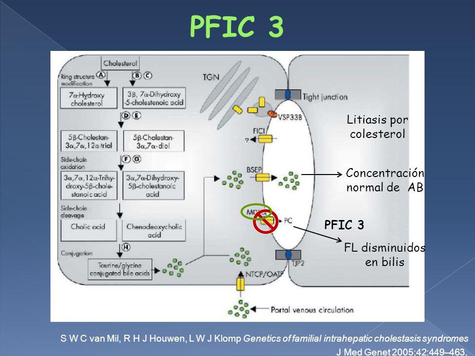 S W C van Mil, R H J Houwen, L W J Klomp Genetics of familial intrahepatic cholestasis syndromes J Med Genet 2005;42:449–463.
