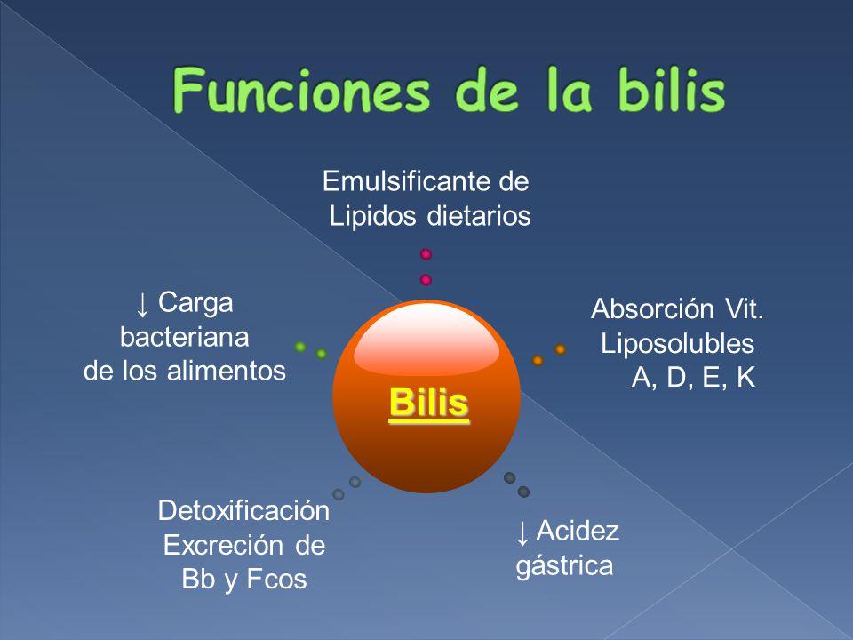 BS: Sales Biliares