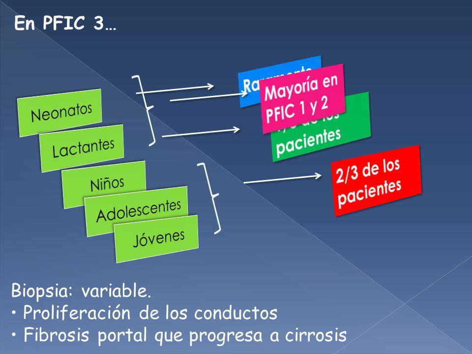 En PFIC 3… Biopsia: variable.