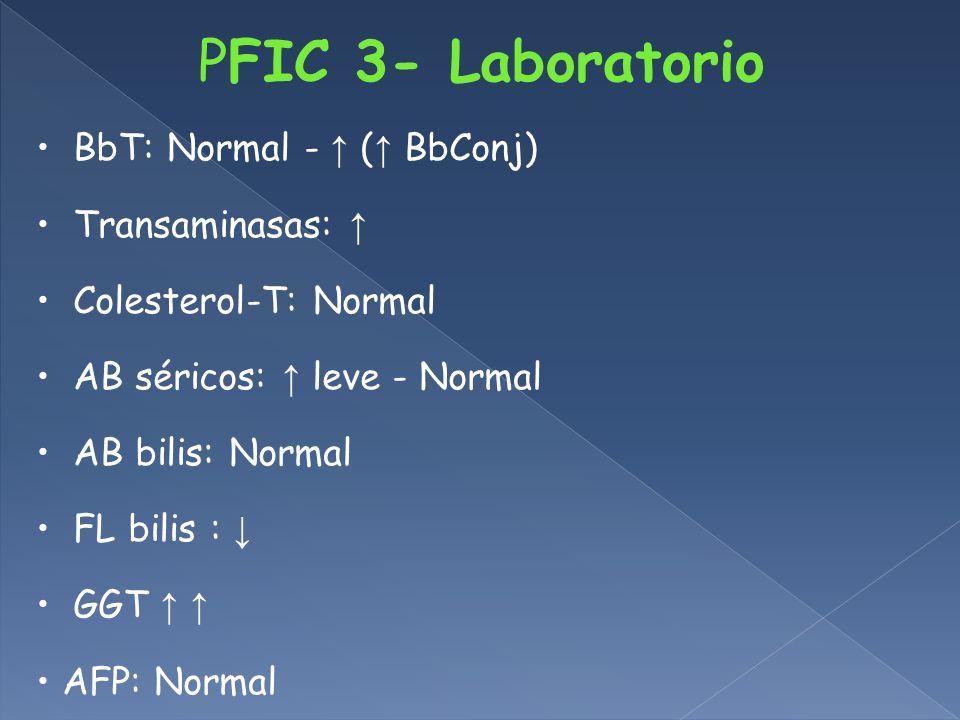BbT: Normal - ( BbConj) Transaminasas: Colesterol-T: Normal AB séricos: leve - Normal AB bilis: Normal FL bilis : GGT AFP: Normal