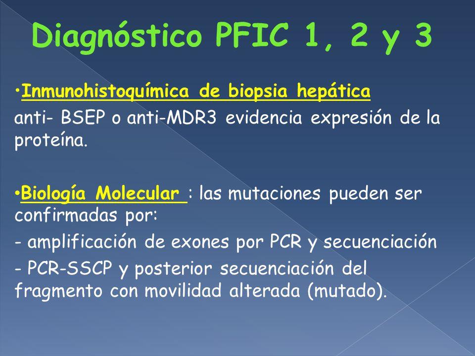Inmunohistoquímica de biopsia hepática anti- BSEP o anti-MDR3 evidencia expresión de la proteína.