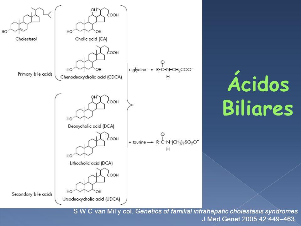Ácidos Biliares S W C van Mil y col.