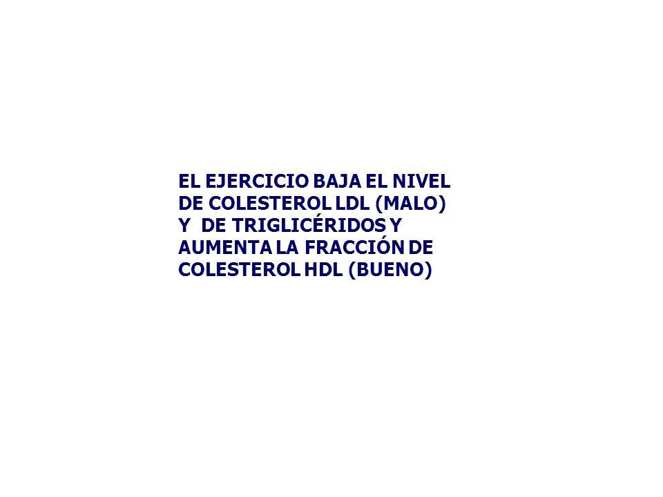 EL EJERCICIO BAJA EL NIVEL DE COLESTEROL LDL (MALO) Y DE TRIGLICÉRIDOS Y AUMENTA LA FRACCIÓN DE COLESTEROL HDL (BUENO)
