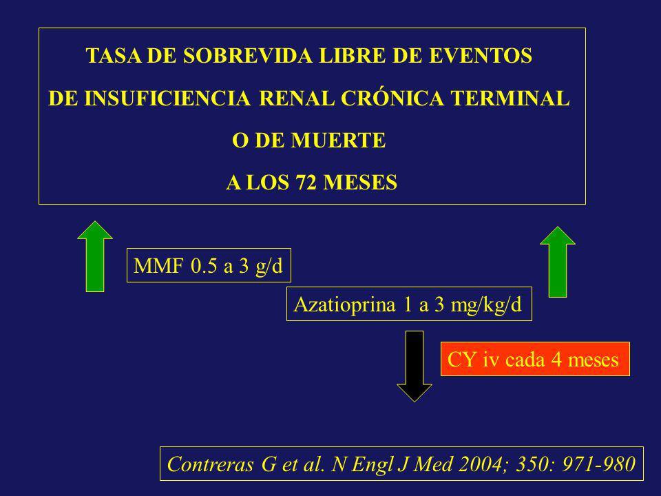 CY iv cada 4 meses Azatioprina 1 a 3 mg/kg/d MMF 0.5 a 3 g/d TASA DE SOBREVIDA LIBRE DE EVENTOS DE INSUFICIENCIA RENAL CRÓNICA TERMINAL O DE MUERTE A