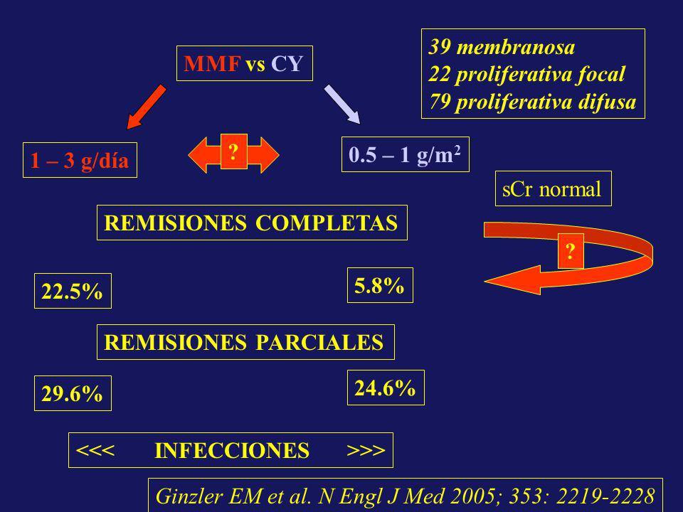 MMF vs CY 1 – 3 g/día 0.5 – 1 g/m 2 39 membranosa 22 proliferativa focal 79 proliferativa difusa REMISIONES COMPLETAS 22.5% 5.8% REMISIONES PARCIALES
