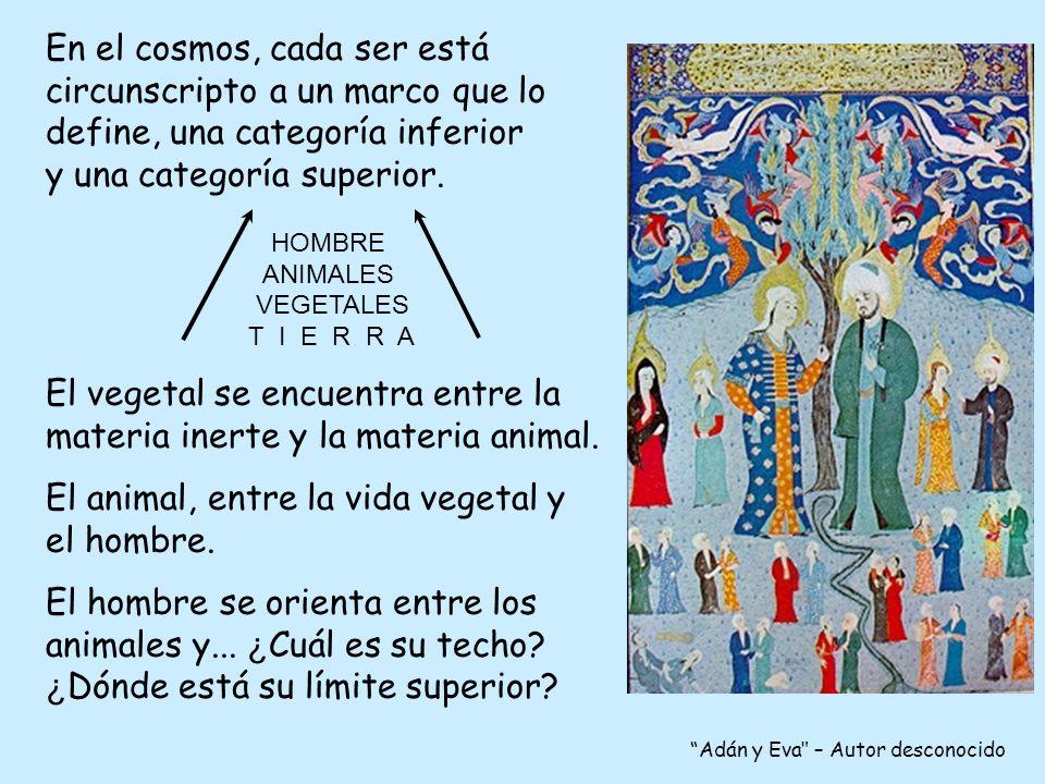 En el cosmos, cada ser está circunscripto a un marco que lo define, una categoría inferior y una categoría superior.