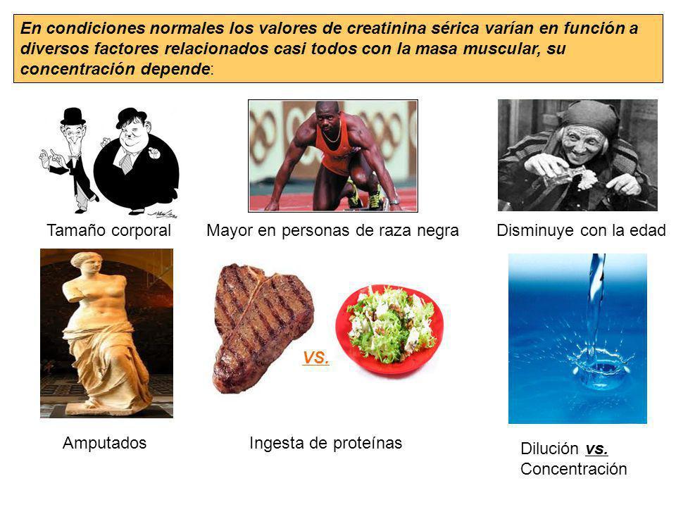 En condiciones normales los valores de creatinina sérica varían en función a diversos factores relacionados casi todos con la masa muscular, su concen