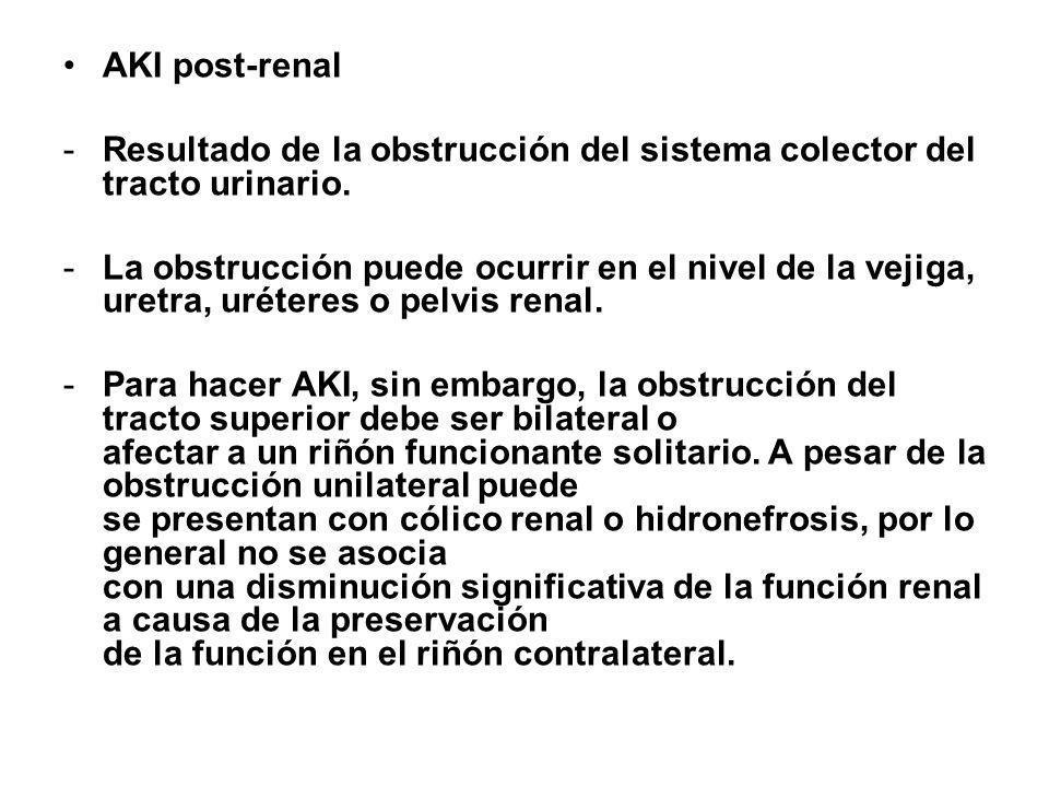 AKI post-renal -Resultado de la obstrucción del sistema colector del tracto urinario. -La obstrucción puede ocurrir en el nivel de la vejiga, uretra,