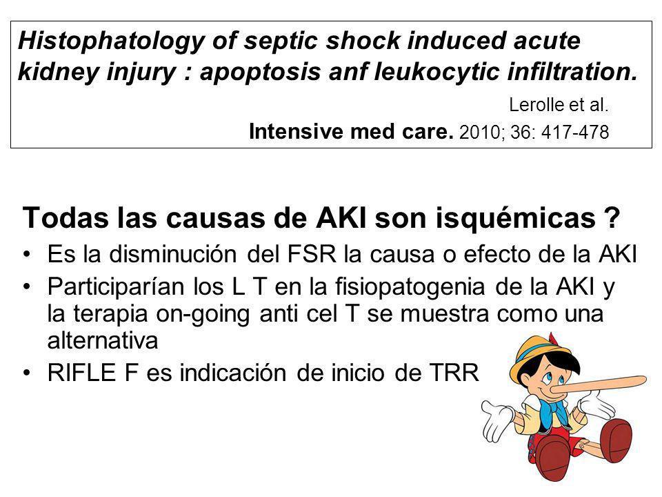 Todas las causas de AKI son isquémicas ? Es la disminución del FSR la causa o efecto de la AKI Participarían los L T en la fisiopatogenia de la AKI y