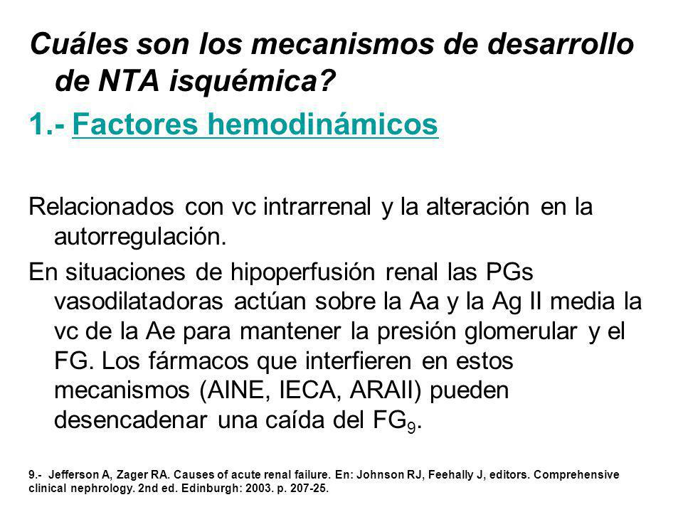 Cuáles son los mecanismos de desarrollo de NTA isquémica? 1.- Factores hemodinámicos Relacionados con vc intrarrenal y la alteración en la autorregula
