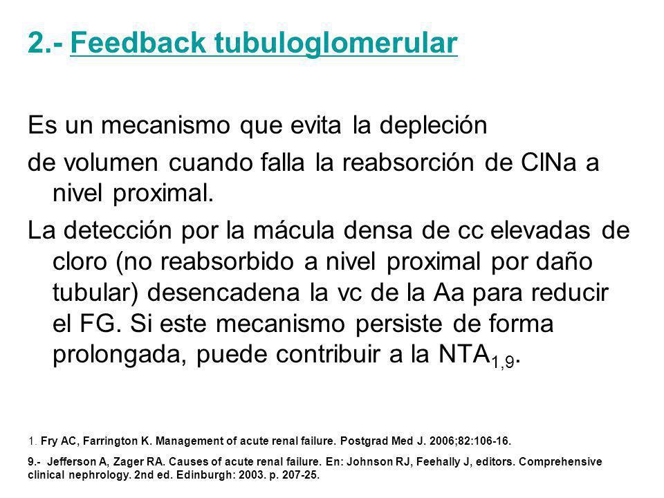 2.- Feedback tubuloglomerular Es un mecanismo que evita la depleción de volumen cuando falla la reabsorción de ClNa a nivel proximal.