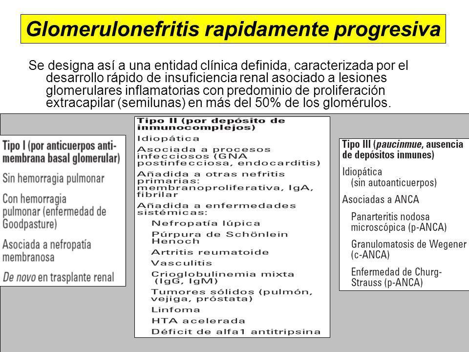 Glomerulonefritis rapidamente progresiva Se designa así a una entidad clínica definida, caracterizada por el desarrollo rápido de insuficiencia renal asociado a lesiones glomerulares inflamatorias con predominio de proliferación extracapilar (semilunas) en más del 50% de los glomérulos.