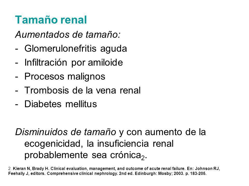 Tamaño renal Aumentados de tamaño: -Glomerulonefritis aguda -Infiltración por amiloide -Procesos malignos -Trombosis de la vena renal -Diabetes mellit