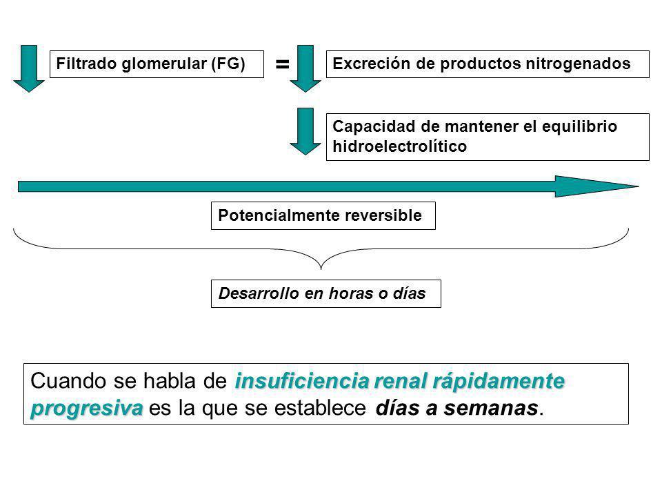 Filtrado glomerular (FG) = Excreción de productos nitrogenados Capacidad de mantener el equilibrio hidroelectrolítico Potencialmente reversible Desarr