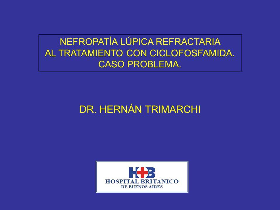 24 meses post-tratamiento global: TA: 125/70 mmHg Cilindros hemáticos negativos Hematuria dismórfica 10% Proteinuria 0.3 g/día Creatinina 1.4 mg/dl; clearance de creatinina 36 ml/min Albúmina 3.8 g/dl FAN 1/80 homogéneo; C3: 100 C4: 20; antiDNA neg
