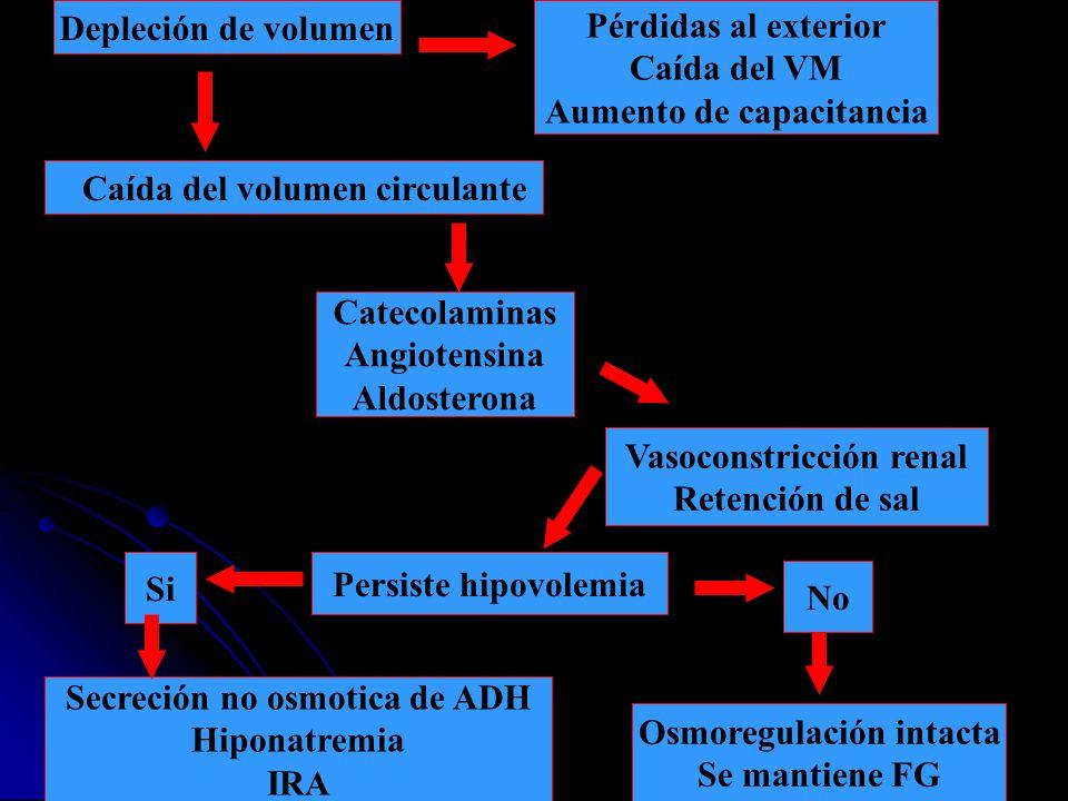 Depleción de volumen Pérdidas al exterior Caída del VM Aumento de capacitancia Caída del volumen circulante Catecolaminas Angiotensina Aldosterona Vas