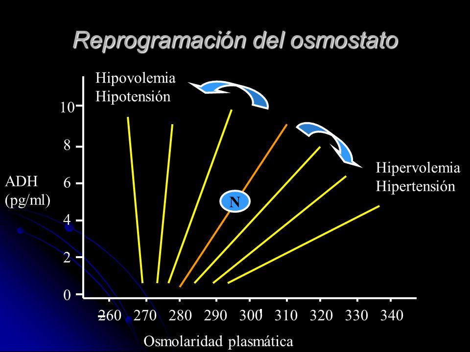 Reprogramación del osmostato 260 270 280 290 300 310 320 330 340 10 8 6 4 2 0 N Hipervolemia Hipertensión Hipovolemia Hipotensión ADH (pg/ml) Osmolari