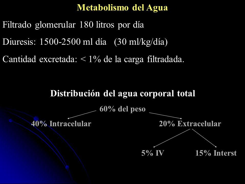 Metabolismo del Agua Filtrado glomerular 180 litros por día Diuresis: 1500-2500 ml día (30 ml/kg/día) Cantidad excretada: < 1% de la carga filtradada.