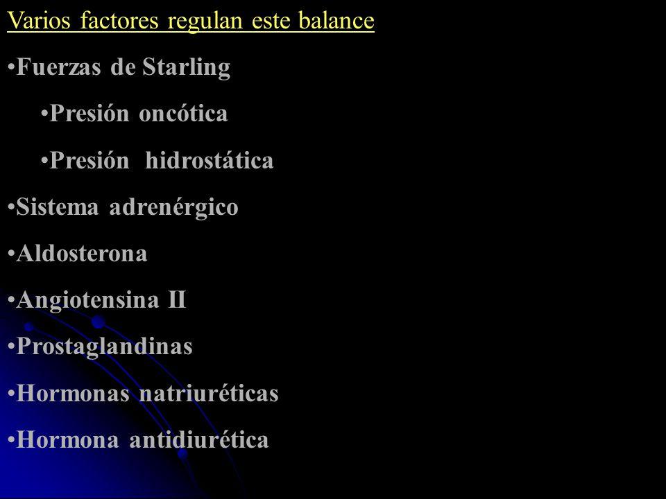 Varios factores regulan este balance Fuerzas de Starling Presión oncótica Presión hidrostática Sistema adrenérgico Aldosterona Angiotensina II Prostag