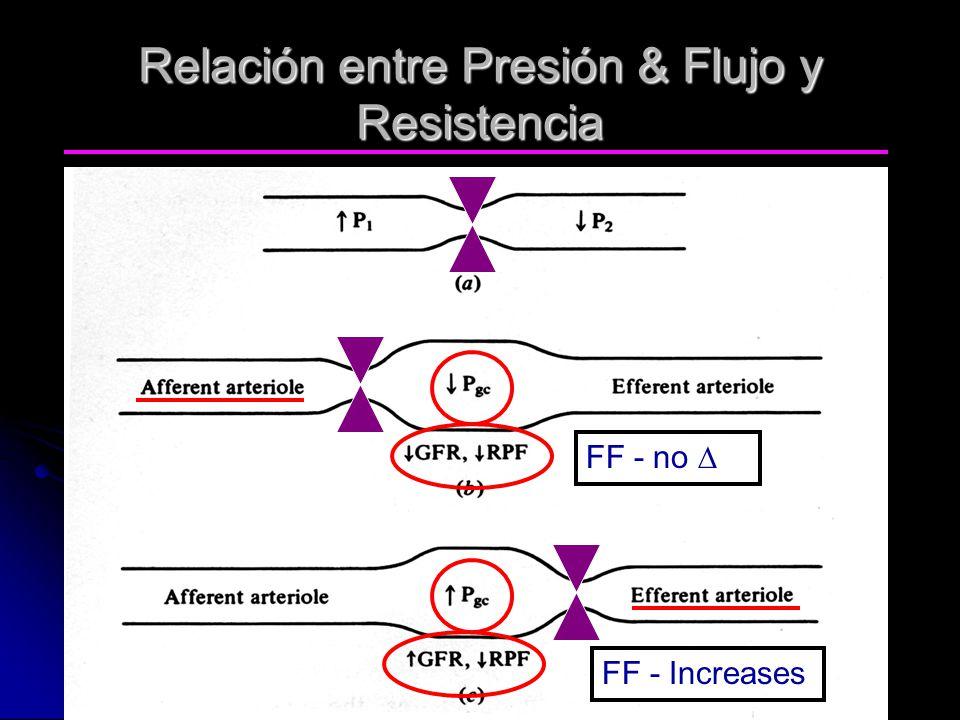 Relación entre Presión & Flujo y Resistencia FF - no FF - Increases