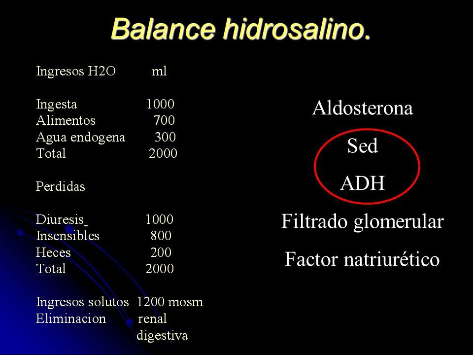 Balance hidrosalino. Aldosterona Sed ADH Filtrado glomerular Factor natriurético