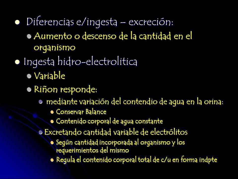 Diferencias e/ingesta – excreción: Diferencias e/ingesta – excreción: Aumento o descenso de la cantidad en el organismo Aumento o descenso de la canti