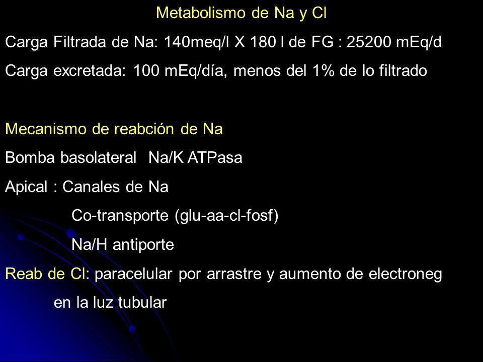 Metabolismo de Na y Cl Carga Filtrada de Na: 140meq/l X 180 l de FG : 25200 mEq/d Carga excretada: 100 mEq/día, menos del 1% de lo filtrado Mecanismo
