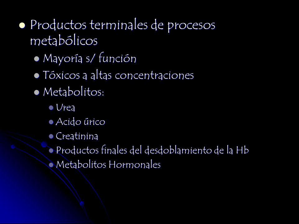 Productos terminales de procesos metabólicos Productos terminales de procesos metabólicos Mayoría s/ función Mayoría s/ función Tóxicos a altas concen