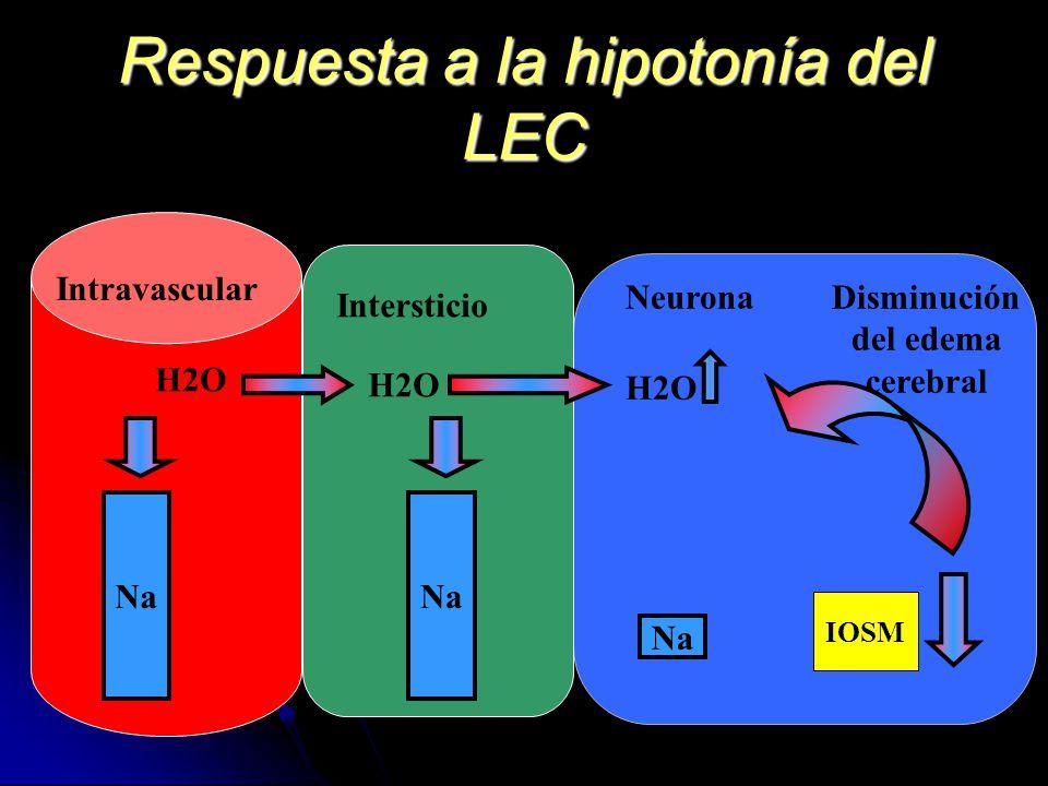 Respuesta a la hipotonía del LEC Intersticio Intravascular Neurona Na H2O IOSM Disminución del edema cerebral