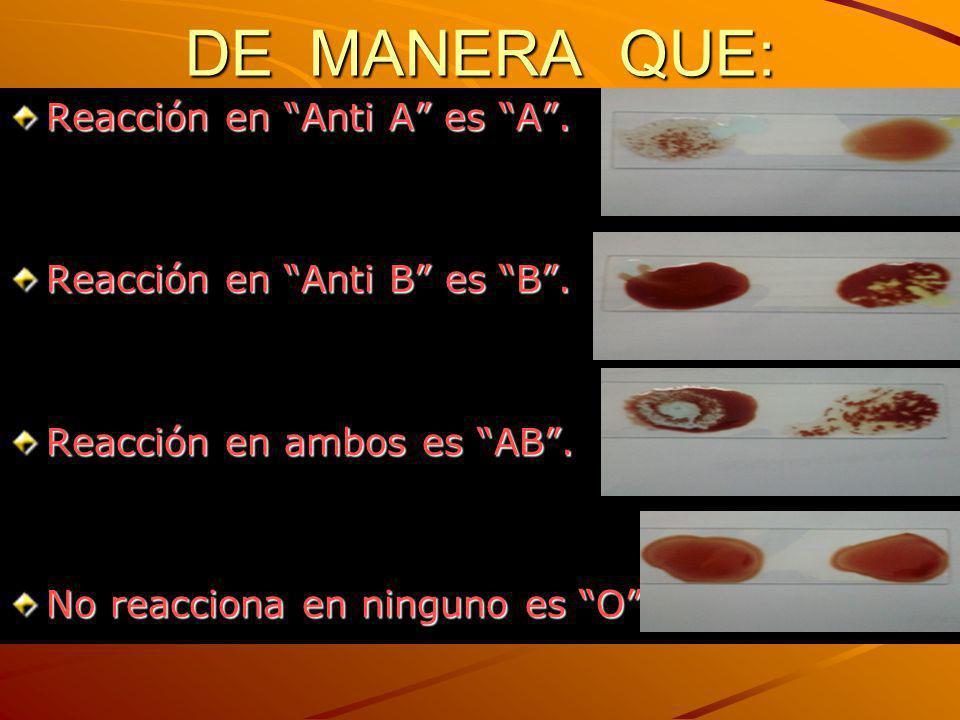 DE MANERA QUE: Reacción en Anti A es A. Reacción en Anti B es B. Reacción en ambos es AB. No reacciona en ninguno es O.