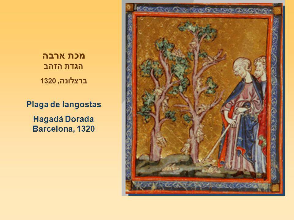 מכת ארבה הגדת הזהב ברצלונה, 1320 Plaga de langostas Hagadá Dorada Barcelona, 1320