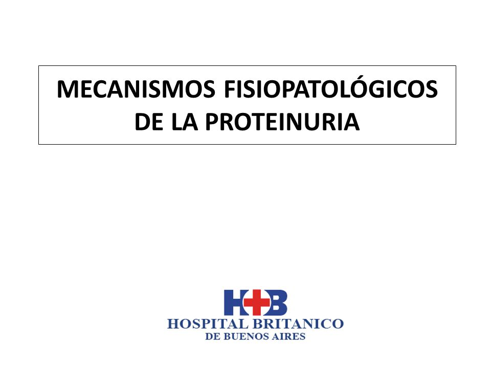 MECANISMOS FISIOPATOLÓGICOS DE LA PROTEINURIA