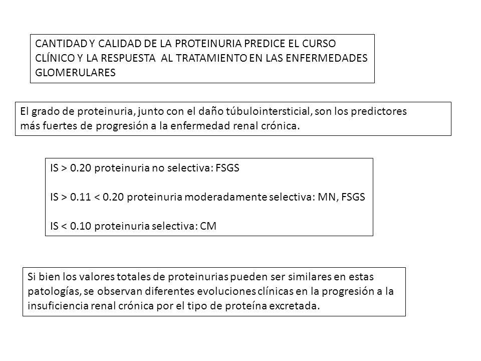 CANTIDAD Y CALIDAD DE LA PROTEINURIA PREDICE EL CURSO CLÍNICO Y LA RESPUESTA AL TRATAMIENTO EN LAS ENFERMEDADES GLOMERULARES El grado de proteinuria,