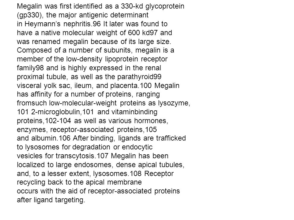 Megalin was first identified as a 330-kd glycoprotein (gp330), the major antigenic determinant in Heymanns nephritis.96 It later was found to have a n