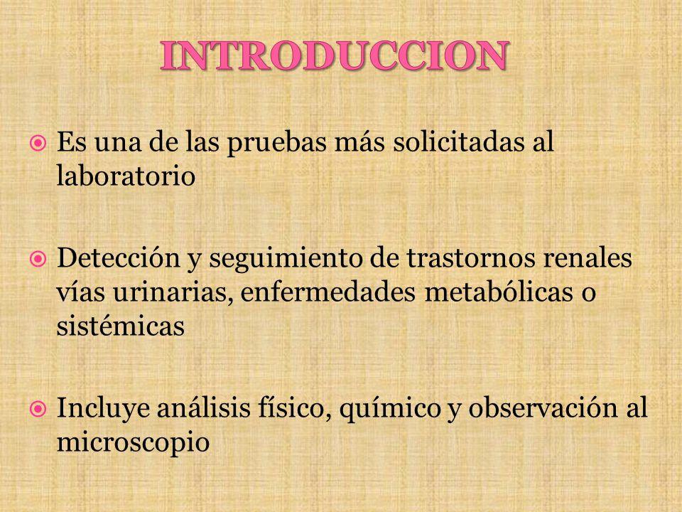 Conteo y clasificación : - impedancia - óptica Clasifica y cuenta los 5 elementos formes como : - RBC (glóbulos rojos) - WBC (leucocitos) - EC (células epiteliales) - CAST (cilindros) - BACT (bacterias)