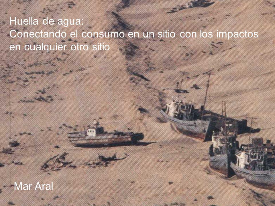 DEDICADOS A MARCAR LA DIFERENCIA Huella de agua: Conectando el consumo en un sitio con los impactos en cualquier otro sitio Mar Aral