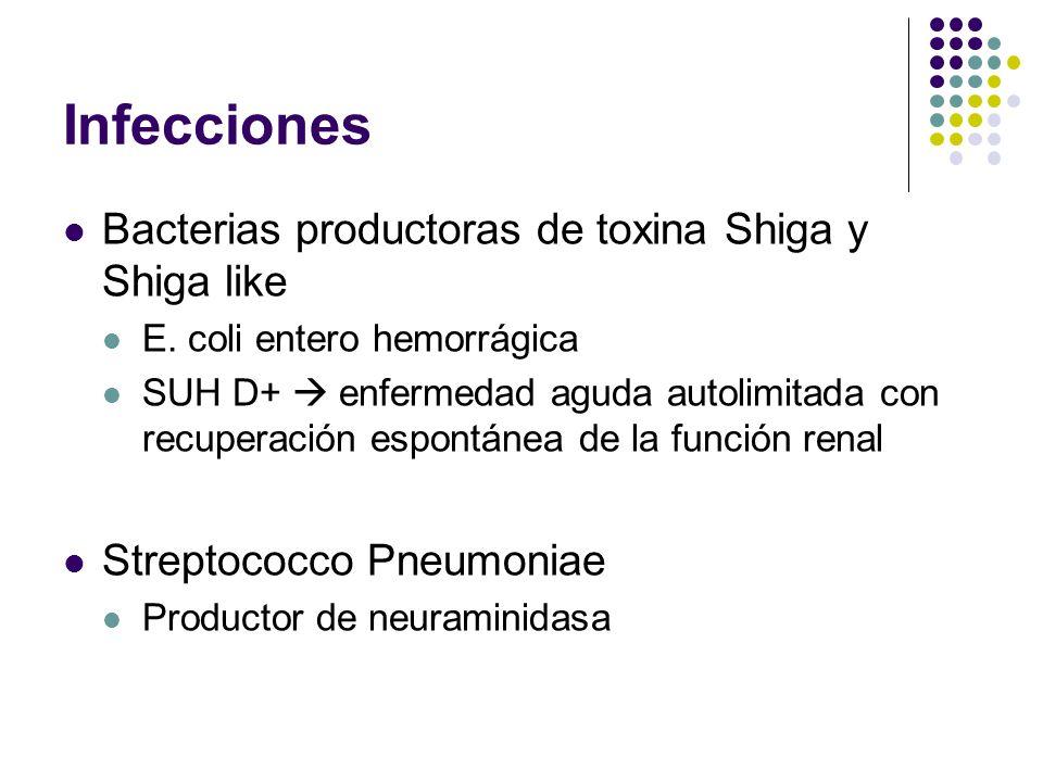 Infecciones Bacterias productoras de toxina Shiga y Shiga like E. coli entero hemorrágica SUH D+ enfermedad aguda autolimitada con recuperación espont