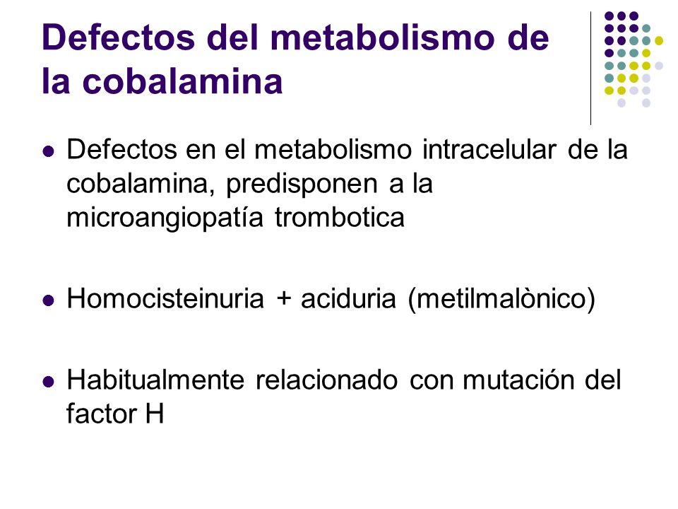 Defectos del metabolismo de la cobalamina Defectos en el metabolismo intracelular de la cobalamina, predisponen a la microangiopatía trombotica Homoci