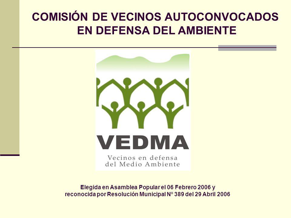 Elegida en Asamblea Popular el 06 Febrero 2006 y reconocida por Resolución Municipal Nº 389 del 29 Abril 2006 COMISIÓN DE VECINOS AUTOCONVOCADOS EN DE