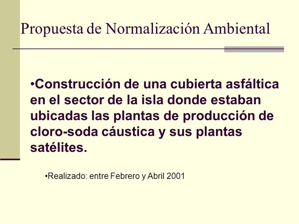 Propuesta de Normalización Ambiental Construcción de una cubierta asfáltica en el sector de la isla donde estaban ubicadas las plantas de producción d