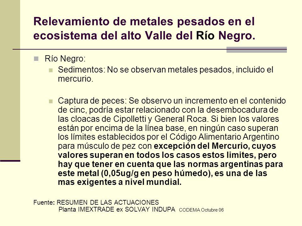 Relevamiento de metales pesados en el ecosistema del alto Valle del Río Negro. Río Negro: Sedimentos: No se observan metales pesados, incluido el merc