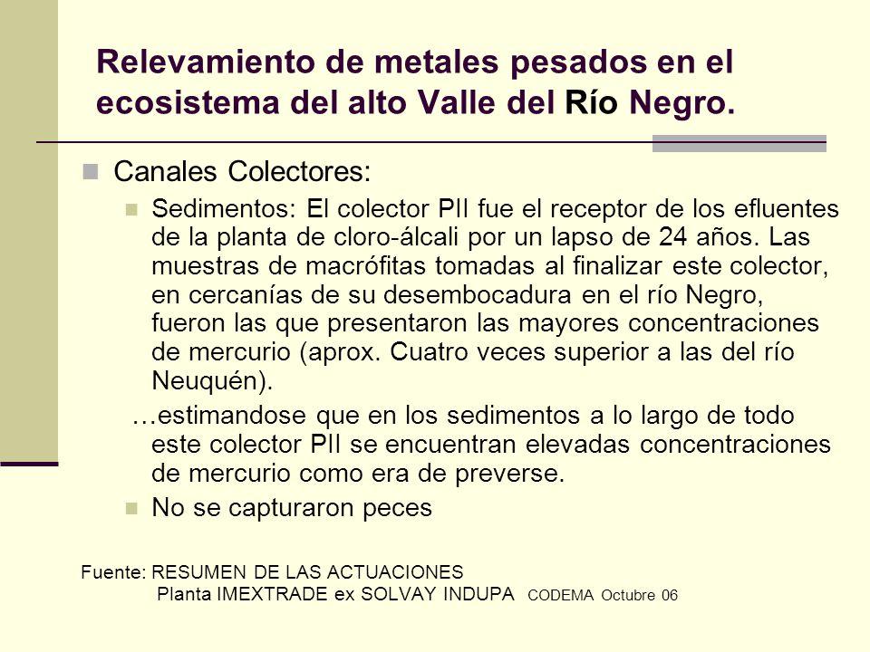 Relevamiento de metales pesados en el ecosistema del alto Valle del Río Negro. Canales Colectores: Sedimentos: El colector PII fue el receptor de los