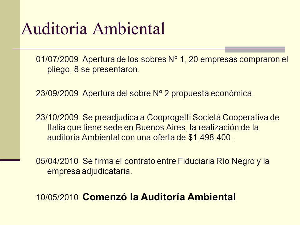 Auditoria Ambiental 01/07/2009 Apertura de los sobres Nº 1, 20 empresas compraron el pliego, 8 se presentaron. 23/09/2009 Apertura del sobre Nº 2 prop