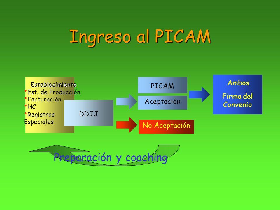 Ingreso al PICAM Establecimiento Est. de Producción Facturación HC Registros Especiales DDJJ PICAM Aceptación Ambos Firma del Convenio No Aceptación P
