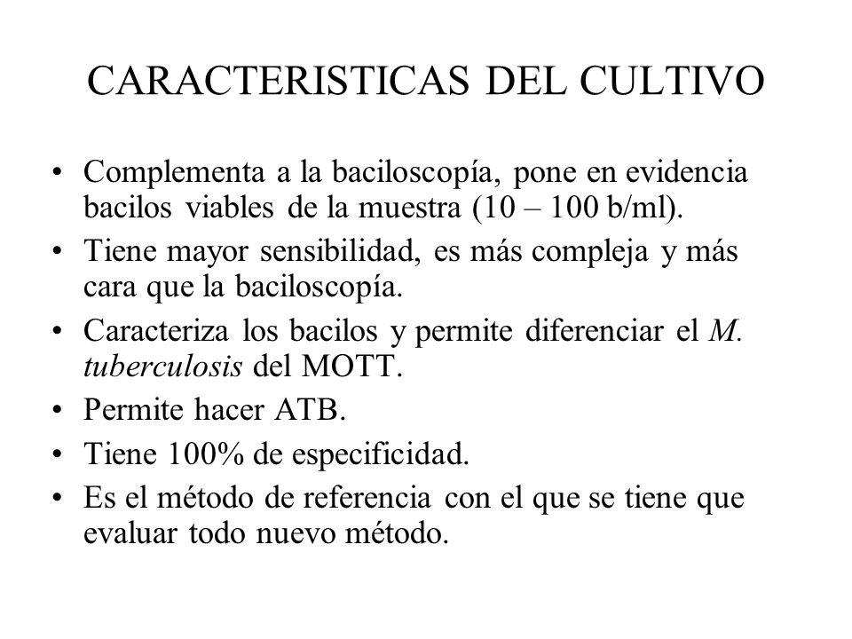 CARACTERISTICAS DEL CULTIVO Complementa a la baciloscopía, pone en evidencia bacilos viables de la muestra (10 – 100 b/ml). Tiene mayor sensibilidad,